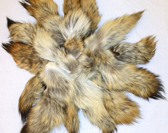 QTY 5 Coyote Tails