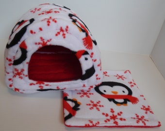 Guinea Pig Cavy Shack in Penguins with Red