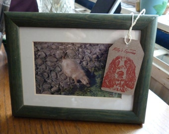 prairie dog photography print in green wooden frame animals