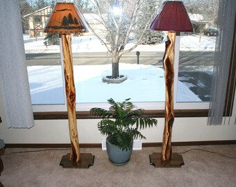Floor Lamp made with Diamond Willow