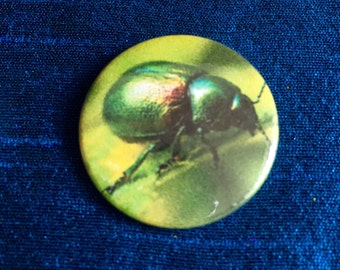 Green Beetle Bug 25mm pinbadge