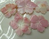 fashion handmade larger genuine  conch shell gergeous fluorial flower freeform carved pink red 20-40mm 6pcs
