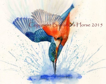 Kingfisher, diving bird fine art, Giclee Watercolour Painting Print A4. Archival quality inks