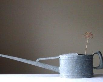 Vintage Watering Can Schneiderkanne 2 1/2 Liter Vintage Gardening Collectible Galvanized Watering Can Garden Decor