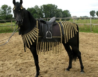 Show costume, horse costume, equine costume black and gold