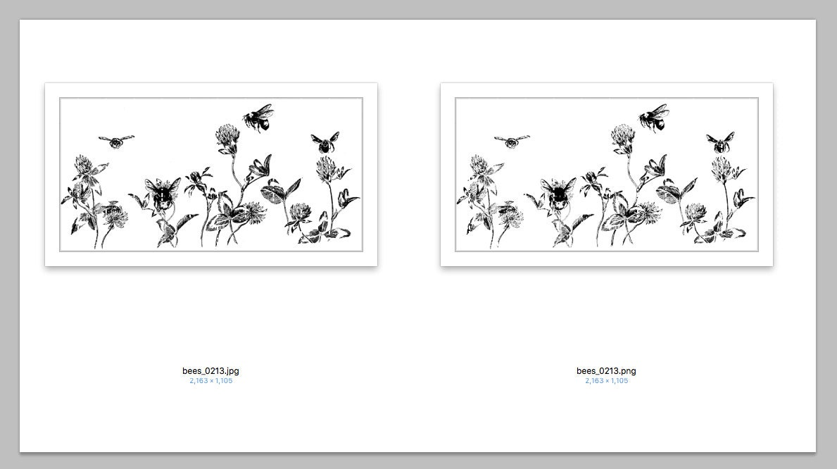 printable bees in flowers border illustration high quality digital
