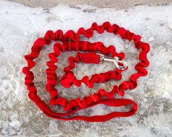 8' Bungee Leash
