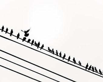 "Black and White Photography, Birds on a Wire, Bird Wall Art, Modern Wall Decor, Bird on a Wire Print, Nursery Decor, Fly Art, ""Rise Above"""