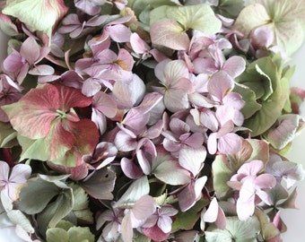 2 Litre/ 10 cups Loose Of Mixed Colours  Dried Hydrangea Petal  for Confetti, Wedding, Flower Girls, Potpourri, Craft, Flower Cones, DIY