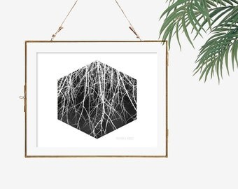 Black and white photography nature photo art bare tree photography geometric art modern poster abstract wall art dark wall decor gothic