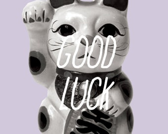 sarcastic greeting card - good luck