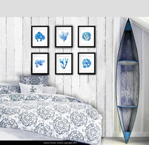 Seaside Bathroom Wall Decor : Items similar to seaside wall decor blue pressed seaweed