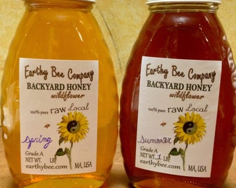 Raw Backyard Honey - 100% pure, natural, local - (1) 1lb jar of honey - MA, USA