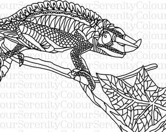Adult Coloring Page - Lizard - Printable Instant Download  #27
