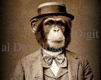 Mr. Ape Digital Download Photo