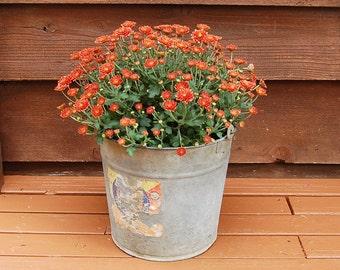 Galvanized Bucket, Vintage No. 12 Farm Pail, Dover Bucket, Rusty Planter