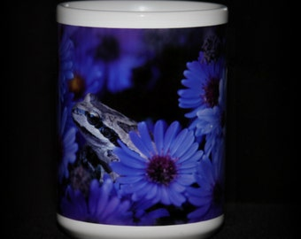 Frog in Asters