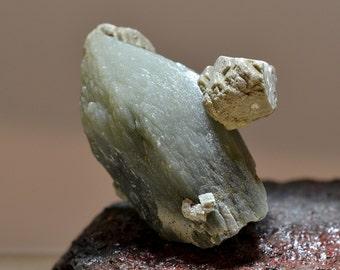 PRASE - Spectacular Green Prase Quartz Crystal with Sharp Termination - Skeletal Quartz Crystal Collectible