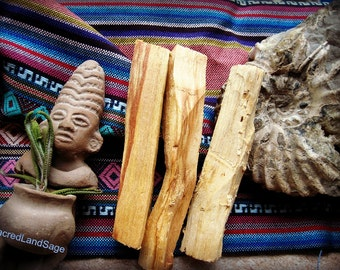 Palo Santo Wood (AA Grade) Holy Wood. Thick Cut (2-3 pc//1 oz/30gm) Calm/Cleanse/Bless. SOUL Retrieval. Native Shaman Ceremony. Wood Incense