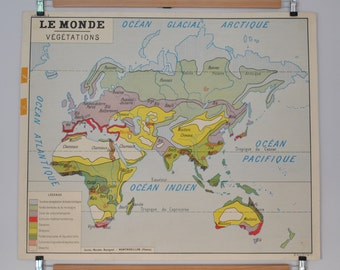 Old maps of geography double-sided - Le Monde - vegetation - school poster of French school of the 1950/60s