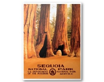 Sequoia National Park Travel Poster