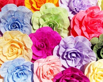 12 giant paper flowers bridal shower baby Photo backdrop Mexican Fiesta Wedding backdrop wall arch birthday party Luau Nursery 5 de Mayo