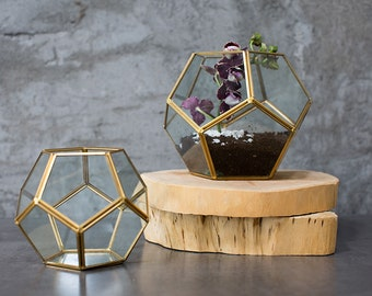 Gold terrarium,  glass hexagon display box, glass globe, glass planter, gold planter, glass terrarium, home decor, planter, gift