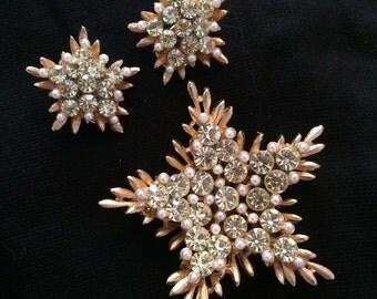 BSK Snowflake Brooch & Earring Set