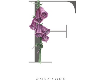Botanical Illustration.Botanical Alphabet. Limited edition fine art print. Botanical Art Print. Foxglove. Starkeys Lane. Gail jones.