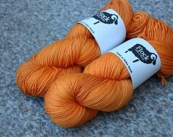 Take a Hike Sock Yarn - Carrot Juice colourway