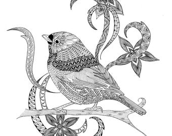 Printable coloring pages. An Instant digital download for adult colouring.