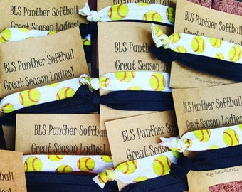 Customizable Softball Team tie cards
