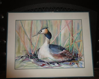 "Watercolor of a ""Great Crested Grebe"" Signed A. Hulette"