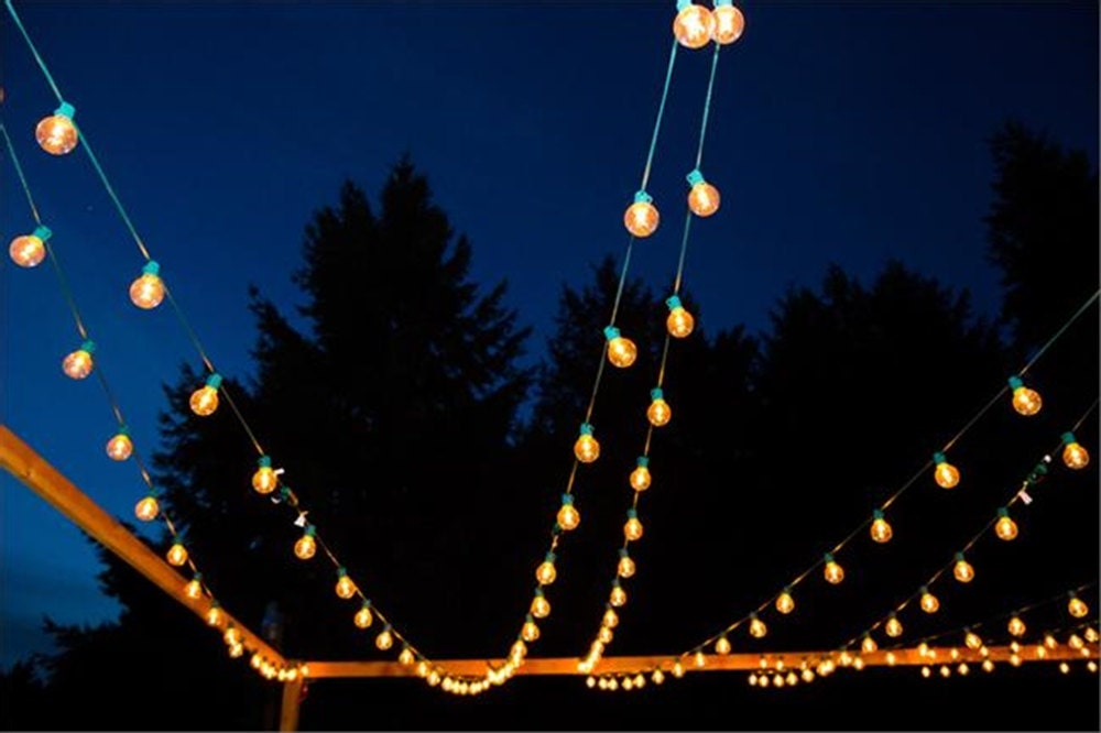 75 ft. Green 25-Socket Globe String Lights With 36 by TaaraBazaar