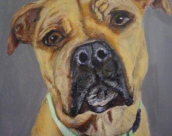 custom boxer art from photograph unique boxer owner gift pet portrait of a boxer art boxer painting of a christmas pet gift