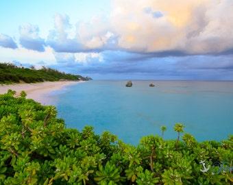 Long Bay Overlook ~ Bermuda, Long Bay Beach, Pink Sand, Artwork, Beach Photography, Wall Art, Coastal, Home Decor, Ocean, Seascape, Tropical