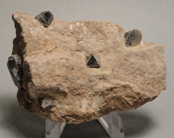 Rare Teruelite Crystals Teruel Spain Collection 1972 Rare