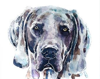 "Weimaraner"" Print Watercolour A3 (30*40cm/16*12 Inches)"