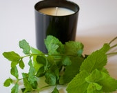 Garden Mint Scented Candle. All Natural Soy Candle. Natural Scented Candle. Spa Gift. Great Gift Idea.