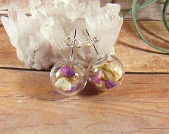 Terrarium earrings, real flower earrings, floral studs, flower globe studs, sea lavender earrings