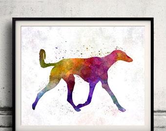 Saluki in watercolor 8x10 in. to 12x16 in. Fine Art Print Glicee Poster Decor Home Watercolor Illustration - SKU 1195