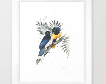 Jay Birds Print