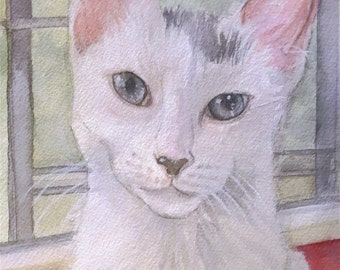 Original Painting of a White Cat