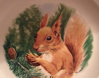 Royal Worcester/ Palissy Red Squirrel Plate/ Vintage
