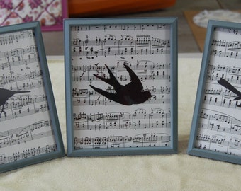 Bird Silhouette Pictures with Music Backgroung Paper and Painted Frames