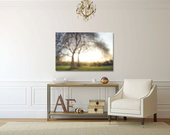 tree silhouette photograph, large tree canvas, lone tree print, abstract tree art, oregon photography, portland photo, oregon art