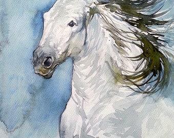 White Wild Camargue Horse, White Wild Stallion, Running Camargue Horse, Running White Wild Horse, Running White Wild Stallion,  (print)