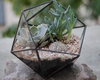 Geometric Terrarium / Small Icosahedron / Stained Glass Terrarium / Handmade Glass Planter / Stained glass vase