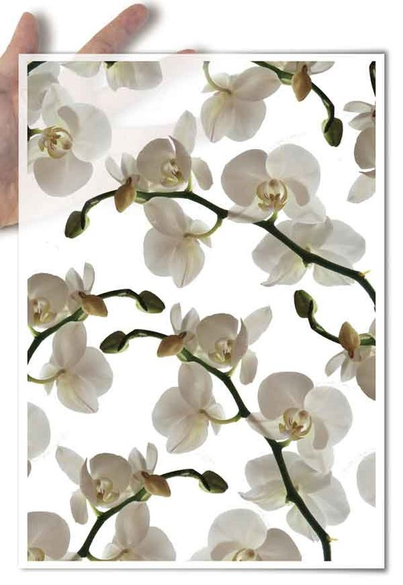 Decoupage Paper • orchid orchids queen of flowers • for mod podge decopatch scrapbooking