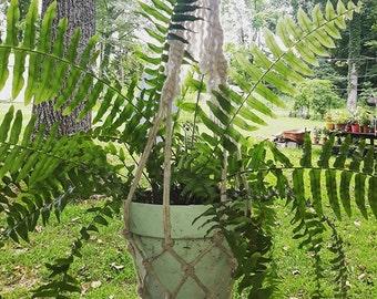 Lucky Plant Hanger MD